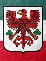 depositphotos_118695820-stock-photo-flag-of-gorzow-wielkopolski-with